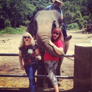 bethany - thailand- Elephant kiss